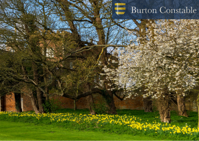Learning at Burton Constable (2)